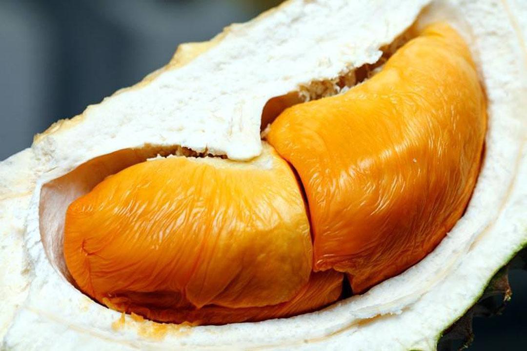 Harga Buah Durian Pulau Pinang Waktu PKP 3.0
