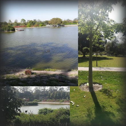 junaid-waqar-travel-blog