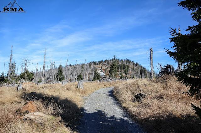 Wanderung Bayerischer Wald - Wandern Goldsteig Rachel Lusen BMa