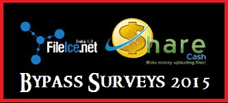 ileice-survey-bypass-trick