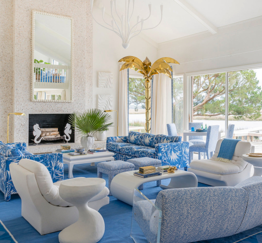 Palm Beach Interior Design Photos and Images