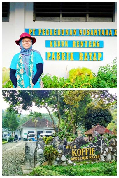 Villa Rayap Jember