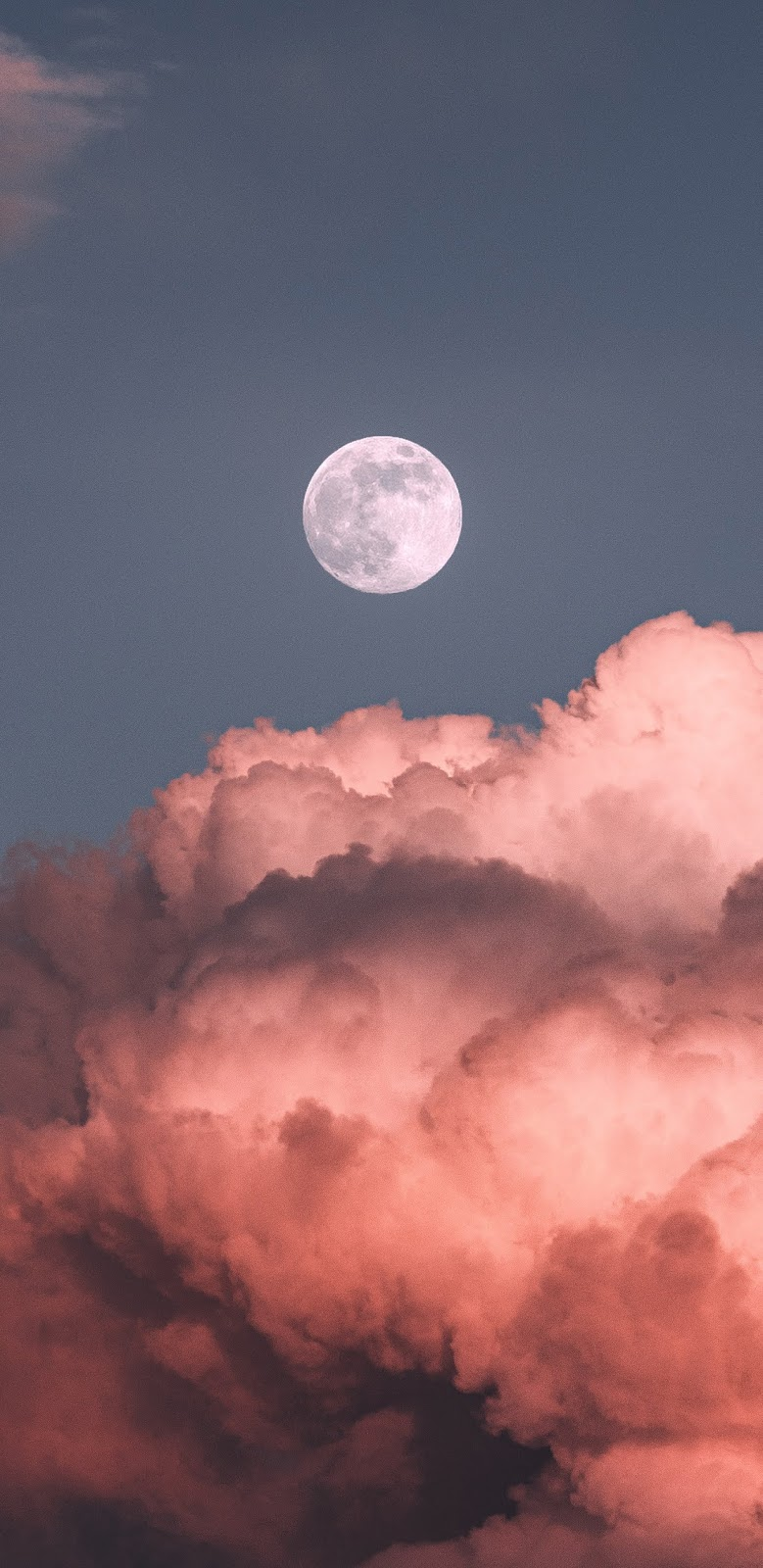 Moon in the pink sky