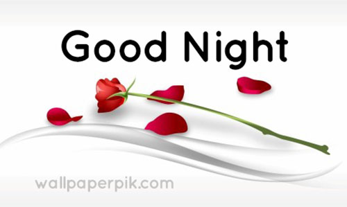 good night pictures rose good night wallpaper