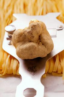White Truffle: Rp 620 juta/kg
