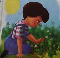 नन्हे पौधे की कहानी