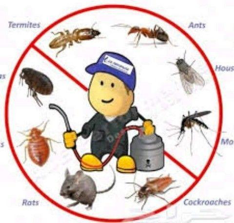 رش مبيدات , مكافحة حشرات , مكافحة الصراصير بالقطيف , مكافحة النمل الابيض بالقطيف , مكافحة الفئران بالقطيف , مكافحة الحمام بالقطيف , رش دفان بالقطيف , تركيب طارد حمام بالقطيف , رش الناموس والذباب بالقطيف , مكافحة العته بالقطيف , افضل شركة رش مبيد بالقطيف , شركة مكافحة الحشرات بالقطيف , رش الحشرات في القطيف , شركة رش صراصير بالقطيف , مكافحة الحشرات في القطيف , شركة مكافحة البق بالقطيف , شركة رش العثة بالقطيف , ارخص شركة رش مبيد بالقطيف , مكافحة الكلاب بالقطيف , مكافحة الثعابين بالقطيف , مكافحة الوزغ بالقطيف , مكافحة الناموس والذباب , رش الناموس , رش الذباب , ابادة الحشرات الطائرة ,ابادة الحشرات الزاحفة , شركة مكافحة حشرات بالقطيف , شركة متخصصة في مكافحة الحشرات , شركة مكافحة بق الفراش , شركة رش حشرات , افضل شركة مكافحة حشرات , شركة رش صراصير , شركة رش صراصير بالقطيف  , مكافحة الصراصير