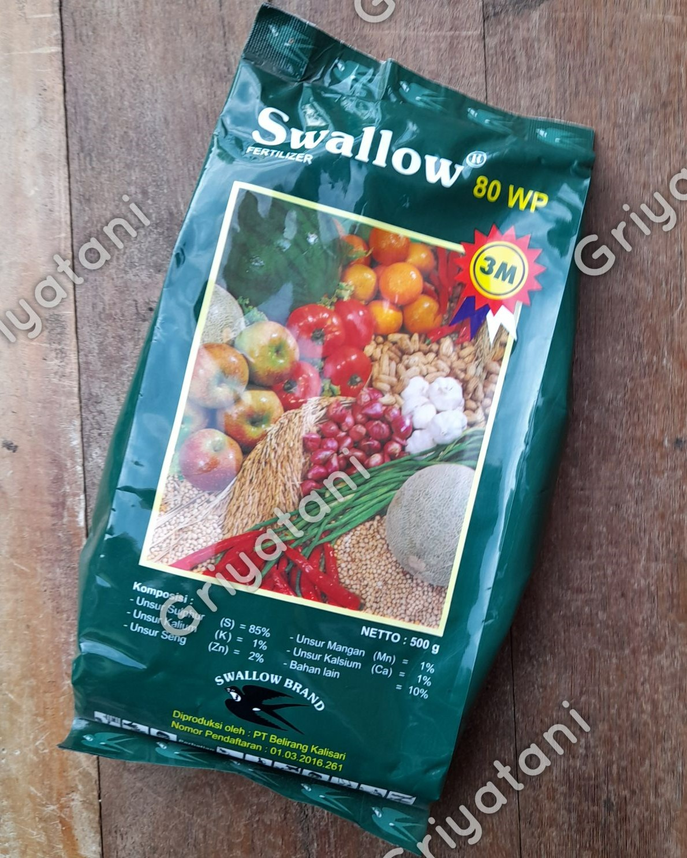 Swallow 80 Wp