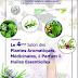 Annonce : Salon des plantes aromatiques