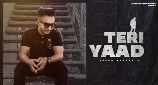 Teri Yaad Lyrics | Seera Buttar