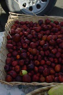 The Jujube - Santa Rosa Original Farmers Market