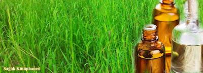 mantar hastaligi icin palmarosa bitkisi yagı