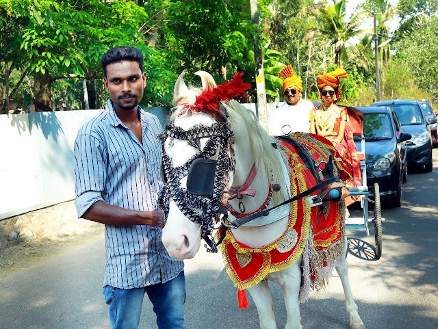 Horse and Cart For Rent in Kerala 8943906399