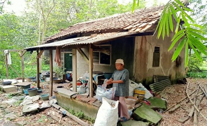 Memprihatinkan, 30 Tahun Tinggal di Rumah Tidak Layak Huni, Nenek di Jayanti ini Belum Tersentuh Pemkab Tangerang