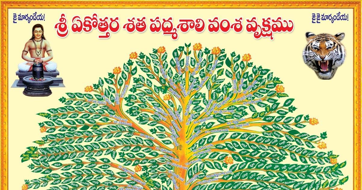 TELUGU PADMASALI Blog: Padmasali Vamsa Vruksham and Gothrams