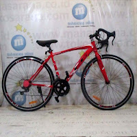 700c steel rapier evergreen road bike