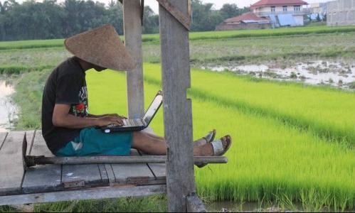 3 Usaha Yang Menguntungkan Di Desa
