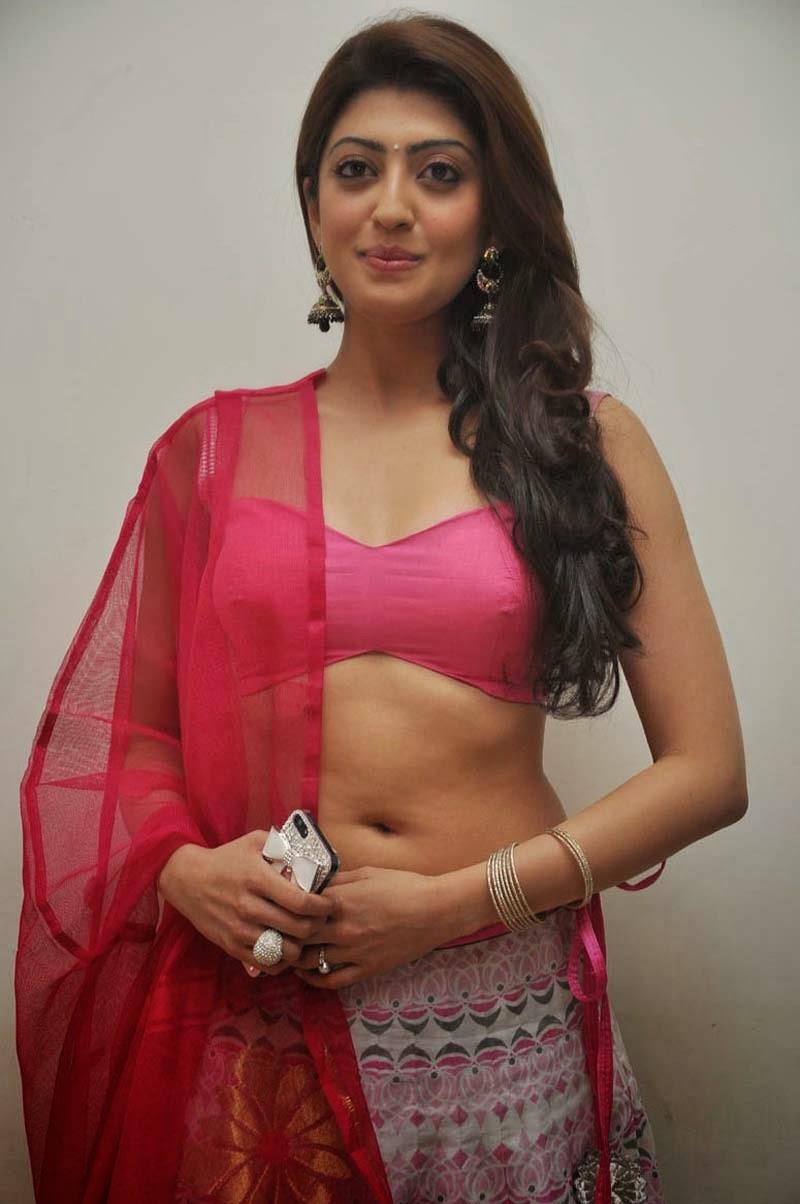 Pranitha Subash Hot Navel Show, Pranitha Sexy Cleavage In Pink-6884