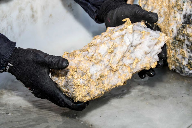 Rare gold specimen from Beta Hunt mine