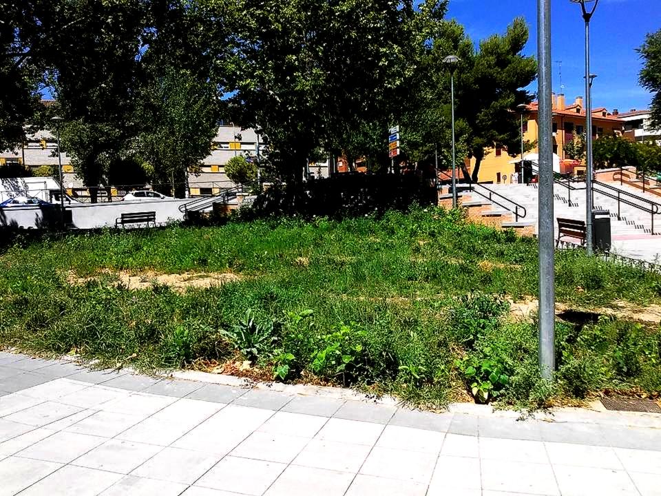Blog de luis ngel zas qu pasa con el mantenimiento de - Mantenimiento parques y jardines ...