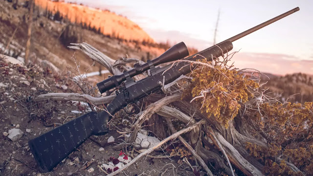 Photo sourced from Christensen Arms