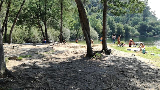 Sombra de árvores e areal para relaxar