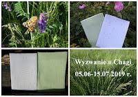 https://pasjeodnalezione.blogspot.com/2019/06/sodko-wyzwaniowa-zabawa-w-zielone-aka.html?showComment=1560493937413#c7199701298967708088