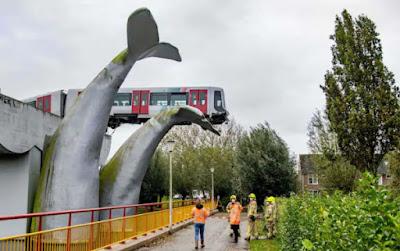 Metro Whale