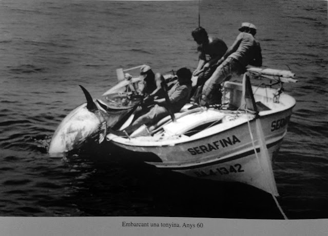 Pesca%2Bde%2Bat%25C3%25BAn%2Brojo%2Ba%25C3%25B1os%2B60 - Un hombre un anzuelo en la pesca de atún rojo en el Mediterráneo