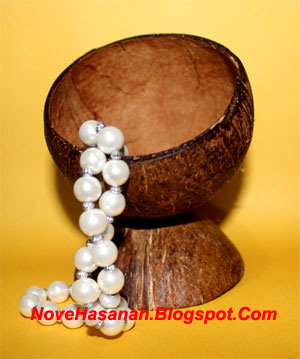 langkah-langkah dan cara membuat kerajinan tangan wadah multigunan dari batok (tempurung) kelapa yang sangat mudah untuk anak-anak