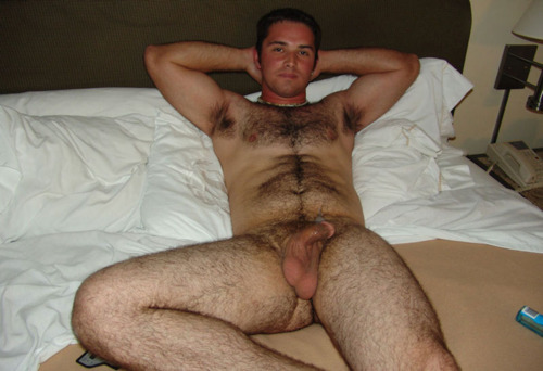 Free gay hairy men pictures