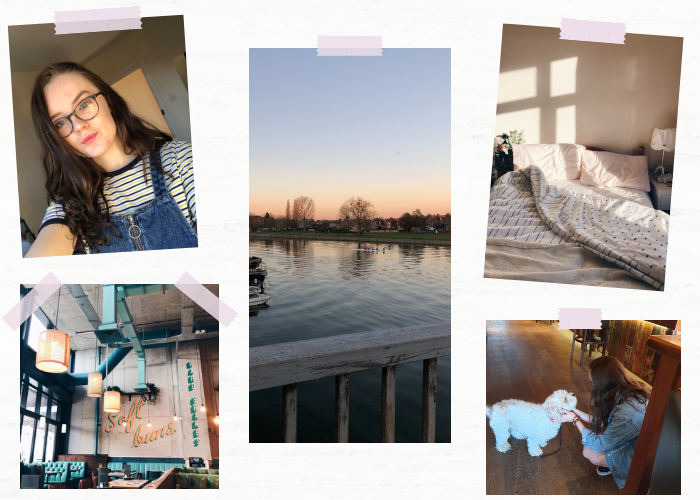 A lifestyle roundup of my week at university featuring all I've bought, watched, eaten, seen and been up to. Featuring beer gardens, my first time trying Greek food and birthday shopping