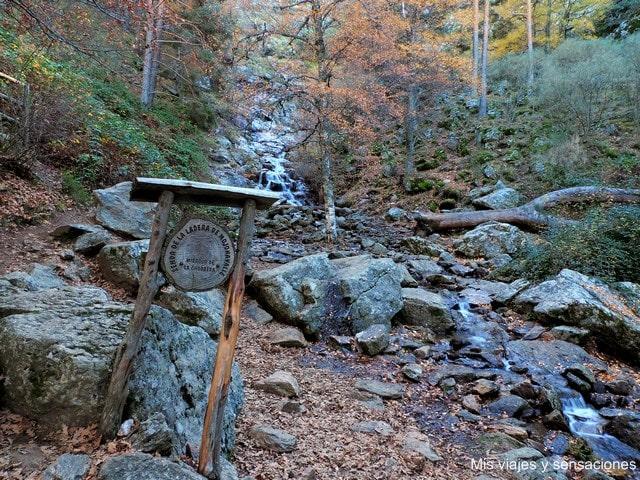 Excursión al abedular de Canencia y la chorrera de Mojonavalle