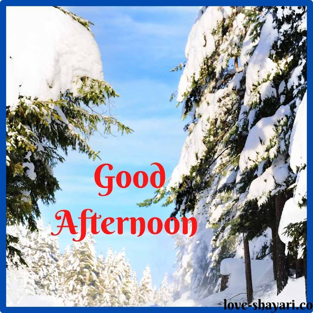pictures of good afternoon