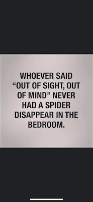 Out of sight.. How true..