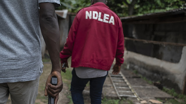 NDLEA arrest 26 suspects for drug abuse in Kwara