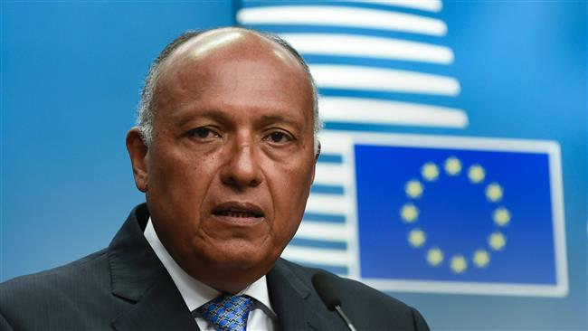 Egypt's Foreign Minister Sameh Shoukry rejects European Union calls for compromise on Qatar dispute