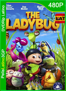 The Ladybug (2018) | DVDRip Latino HD GoogleDrive 1 Link