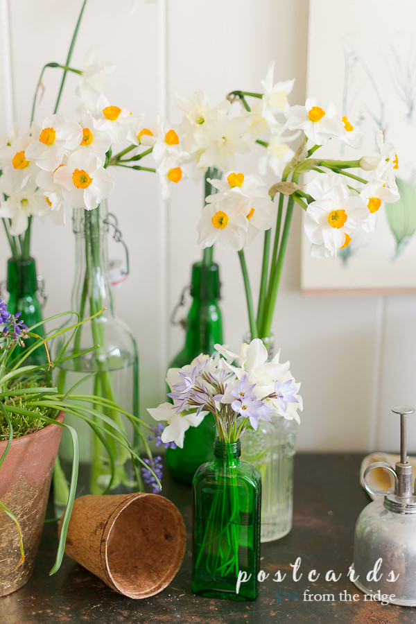 green glass bottles and flowers for cottage garden decor