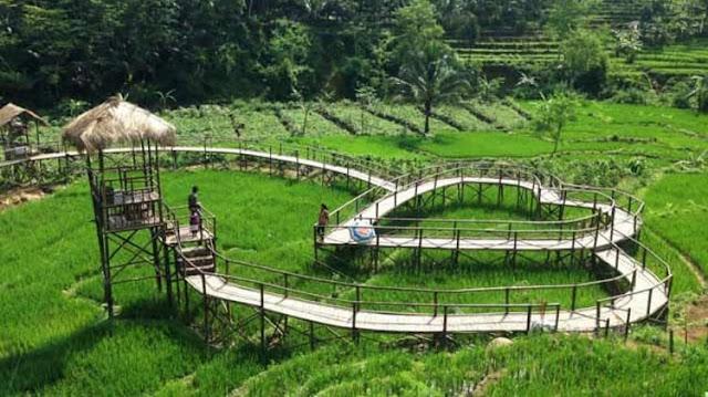 Destinasi Wisata Jembatan Cinta Pring Wulung Purbalingga