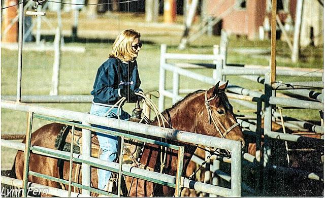 lynn-fern-rodeo