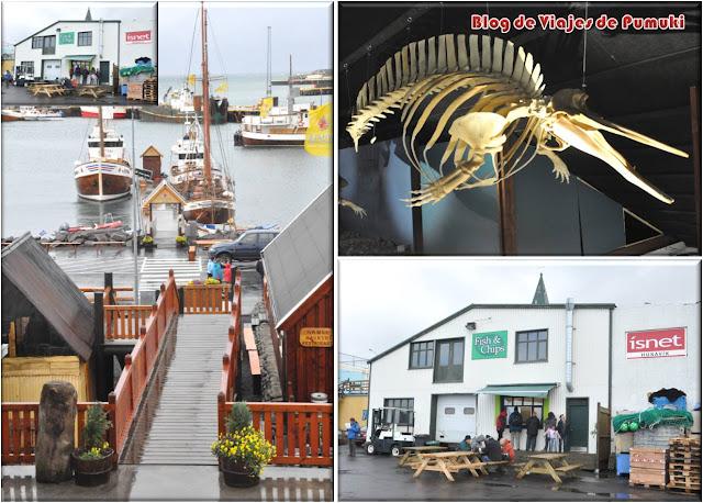 Husavik es un pueblo pesquero con encanto. Desde allí se pueden contratar excursiones para ver ballenas. Blog de Viajes a Islandia