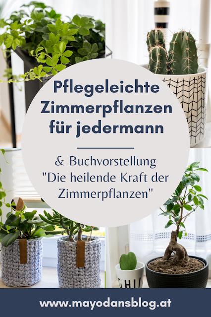 Buchvorstellung Die heilende Kraft der Zimmerpflanzen