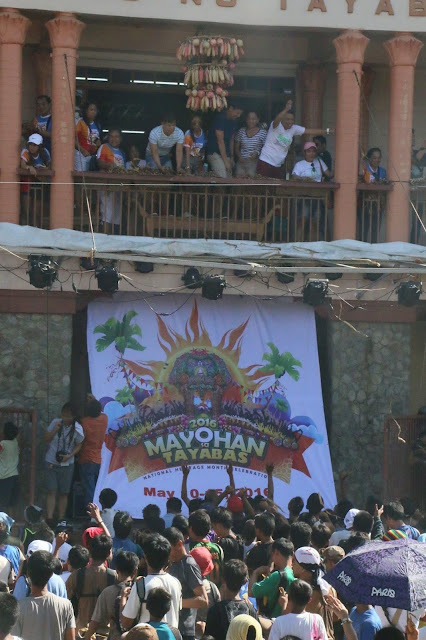 Hagisan ng suman in front of the City Hall of Tayabas, the highlight of Mayohan Festival.