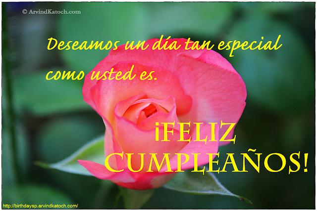 Tarjeta de cumpleaños, Deseamos, día, especial,