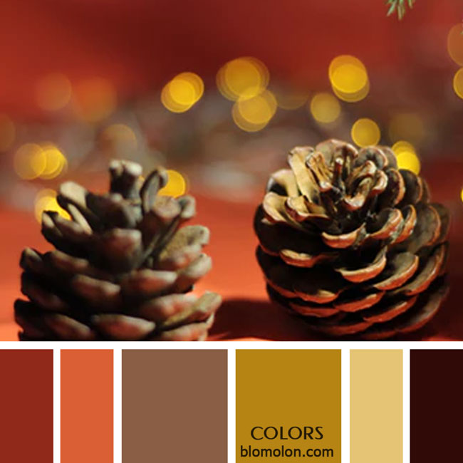 variedad_en_color_paletas_de_colores_57