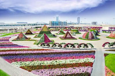 حديقة الزهور دبي  او  دبي ميراكل جاردن