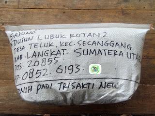 Benih padi yang dibeli   SAKINO Langkat, Sumut.  (Setelah packing karung).