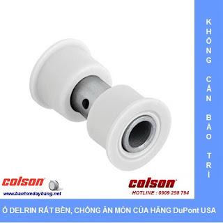Bánh xe Nylon phi 75 không xoay càng inox 304 Colson | 2-3308SS-254 sử dụng ổ nhữa Delrin