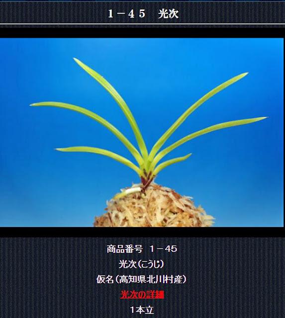 http://www.fuuran.jp/1-45.html